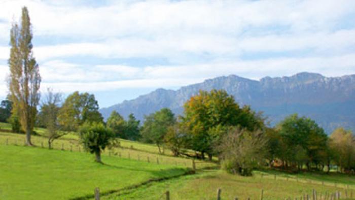 Aizkorri Natural Reserve